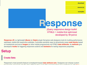Response JS