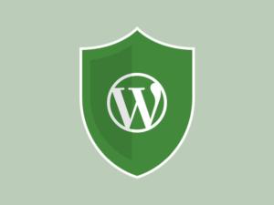 WordPress Security Scan (WP Scan)